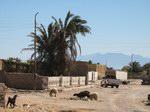 Бедуинская Ассала